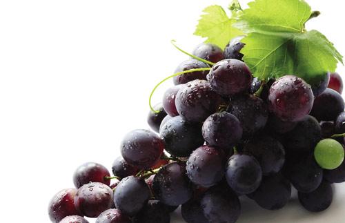 秋季补水的水果